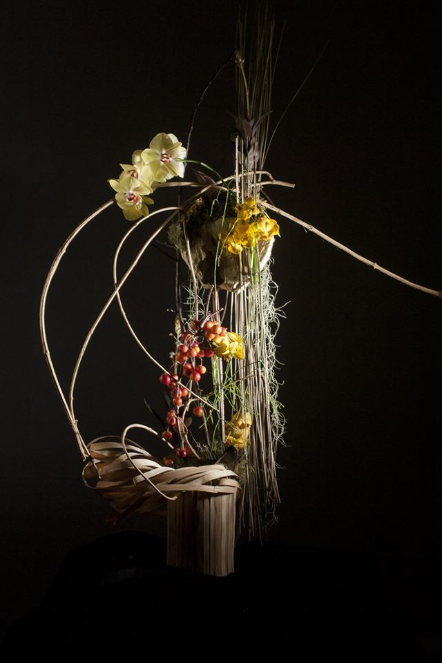 stucture aerienne orchidee art floral